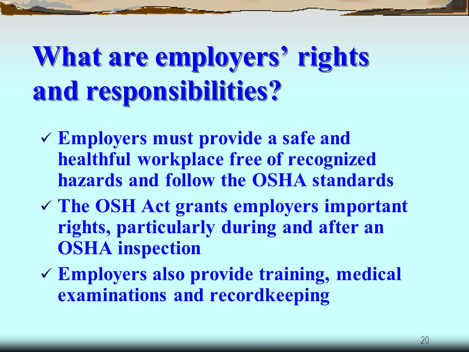 What are employers' rights and responsibilities
