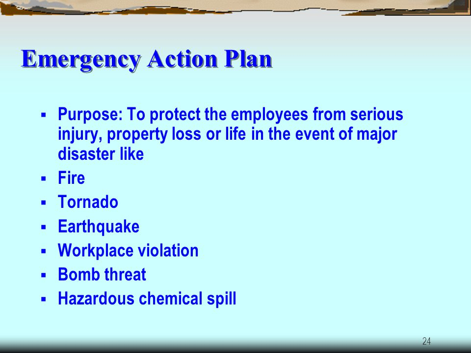 Emergency Action Plan Purpose: To protect the employees from serious injury, property loss or life in the event of major disaster like.