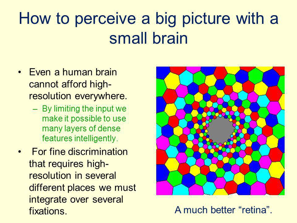 How to perceive a big picture with a small brain