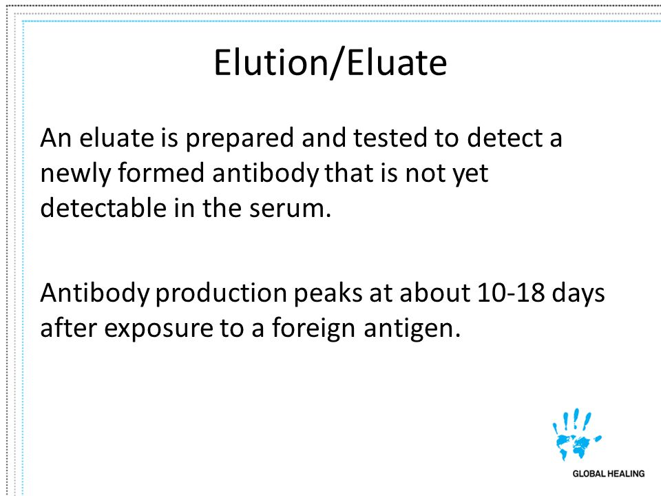 Elution/Eluate An eluate is prepared and tested to detect a newly formed antibody that is not yet detectable in the serum.