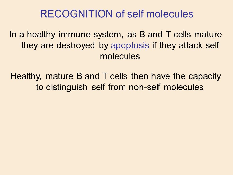 RECOGNITION of self molecules