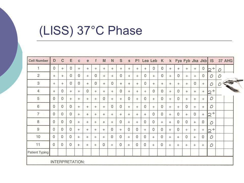(LISS) 37°C Phase 2+ 2+ 2+ 2+