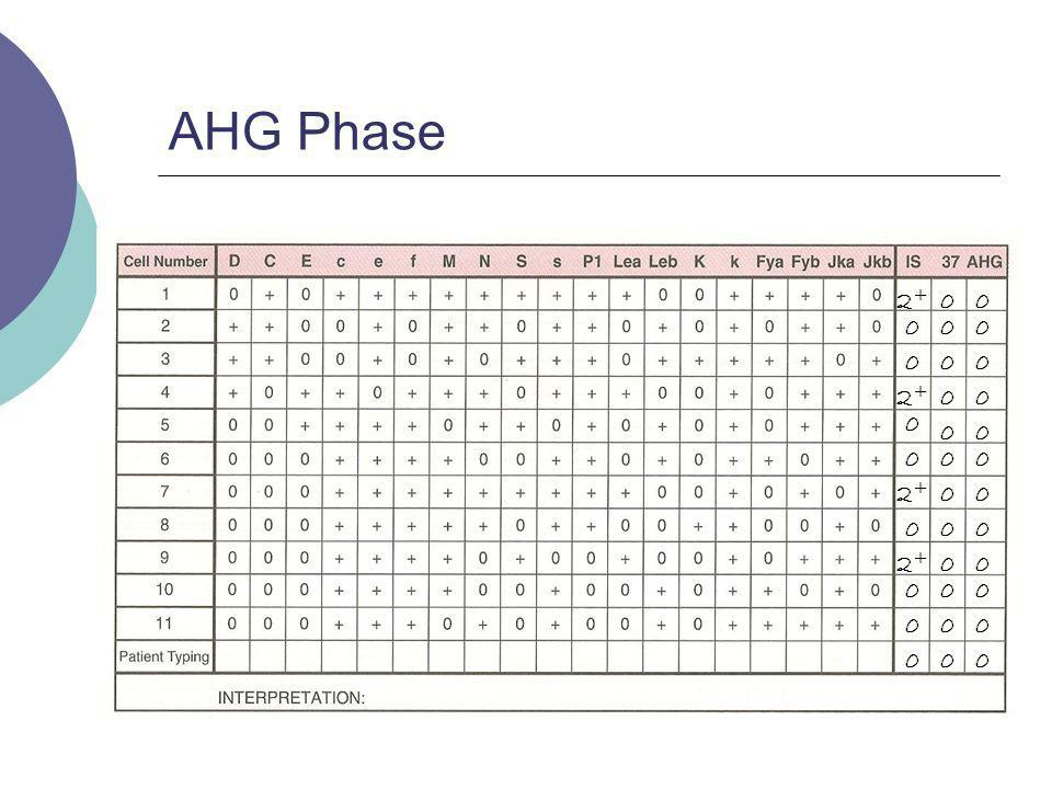 AHG Phase 2+ 2+ 2+ 2+