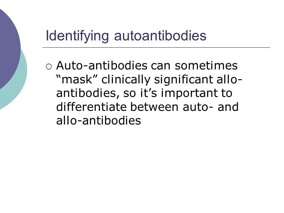 Identifying autoantibodies