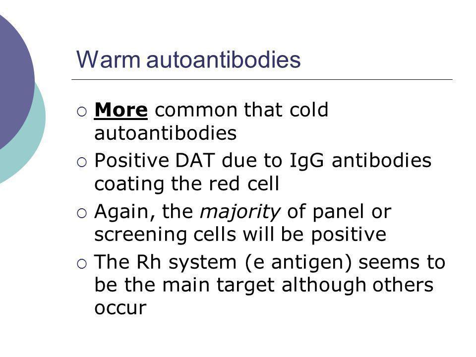 Warm autoantibodies More common that cold autoantibodies