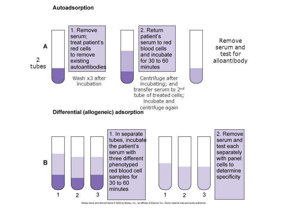 Remove serum and test for alloantibody