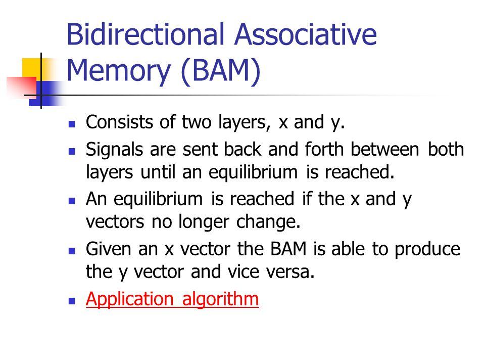 Bidirectional Associative Memory (BAM)