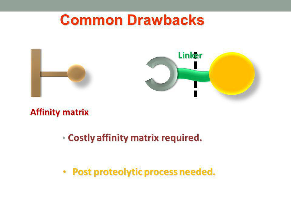 Common Drawbacks Costly affinity matrix required. Linker