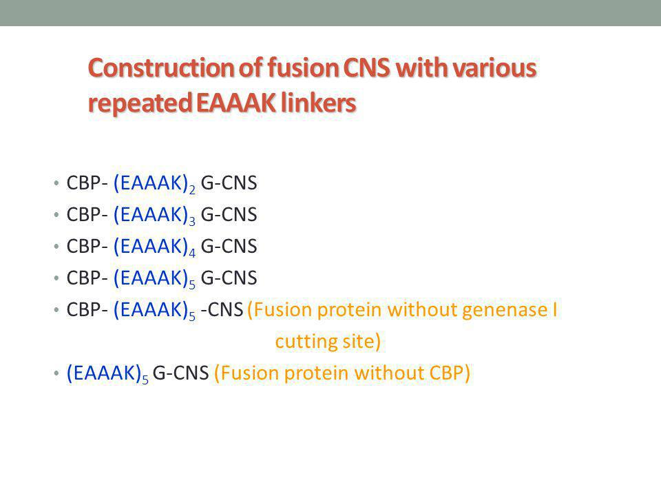 Construction of fusion CNS with various repeated EAAAK linkers