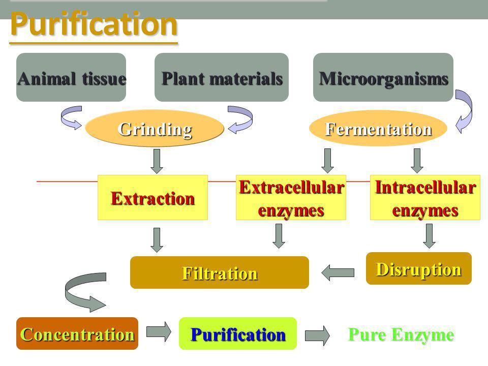 General Flow Chart of Purification