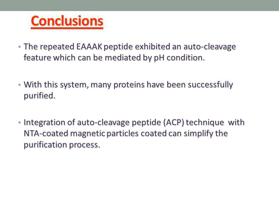 Conclusions The repeated EAAAK peptide exhibited an auto-cleavage feature which can be mediated by pH condition.
