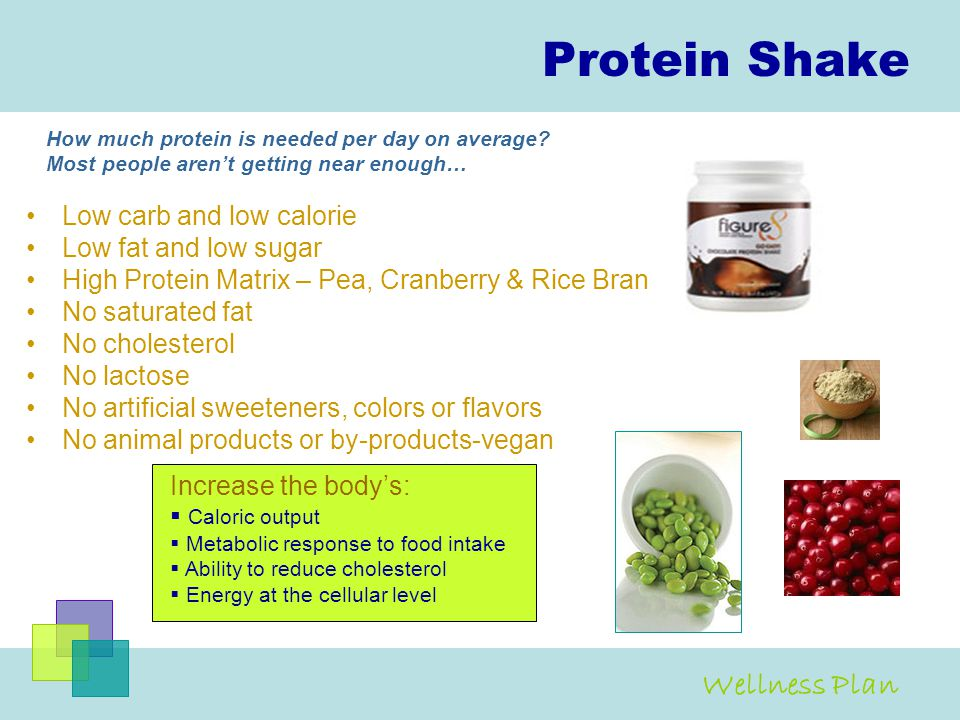 Protein Shake Wellness Plan Low carb and low calorie