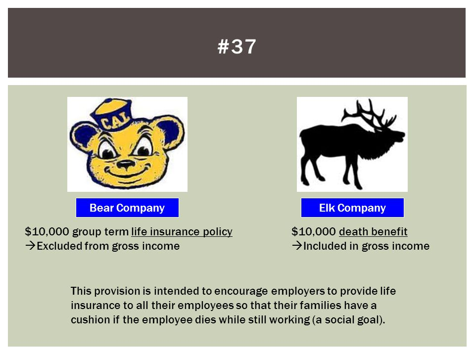#37 Bear Company Elk Company $10,000 group term life insurance policy