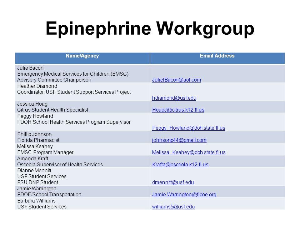 Epinephrine Workgroup