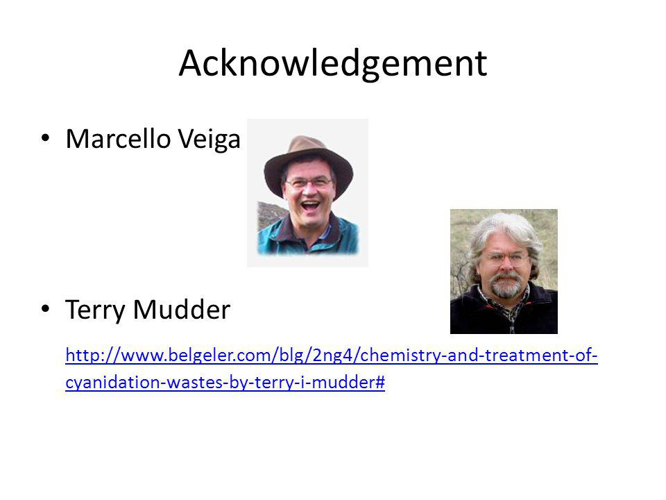 Acknowledgement Marcello Veiga Terry Mudder