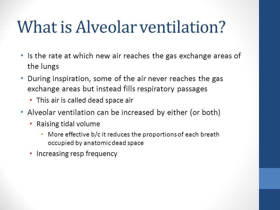 What is Alveolar ventilation