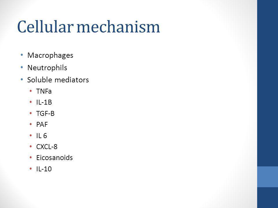 Cellular mechanism Macrophages Neutrophils Soluble mediators TNFa