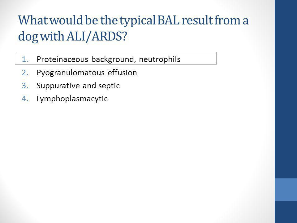 What would be the typical BAL result from a dog with ALI/ARDS