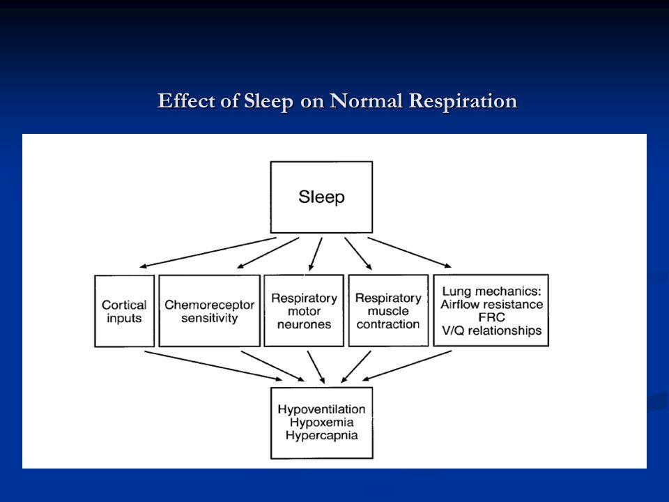 Effect of Sleep on Normal Respiration