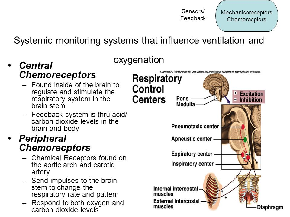 Systemic monitoring systems that influence ventilation and oxygenation