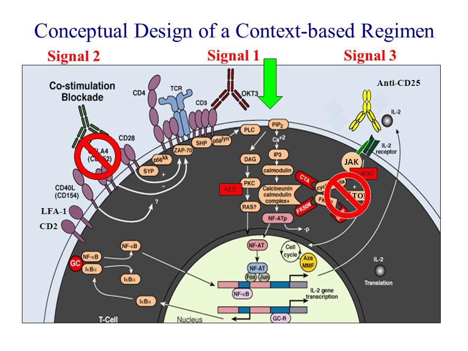 Conceptual Design of a Context-based Regimen