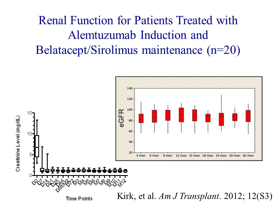 Renal Function for Patients Treated with Alemtuzumab Induction and Belatacept/Sirolimus maintenance (n=20)
