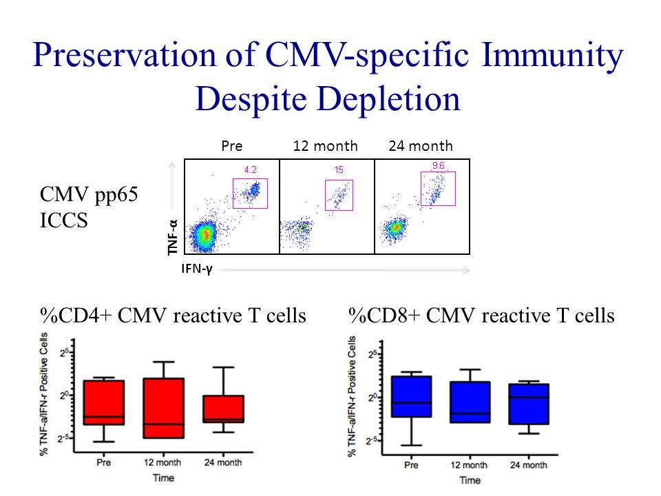 Preservation of CMV-specific Immunity Despite Depletion