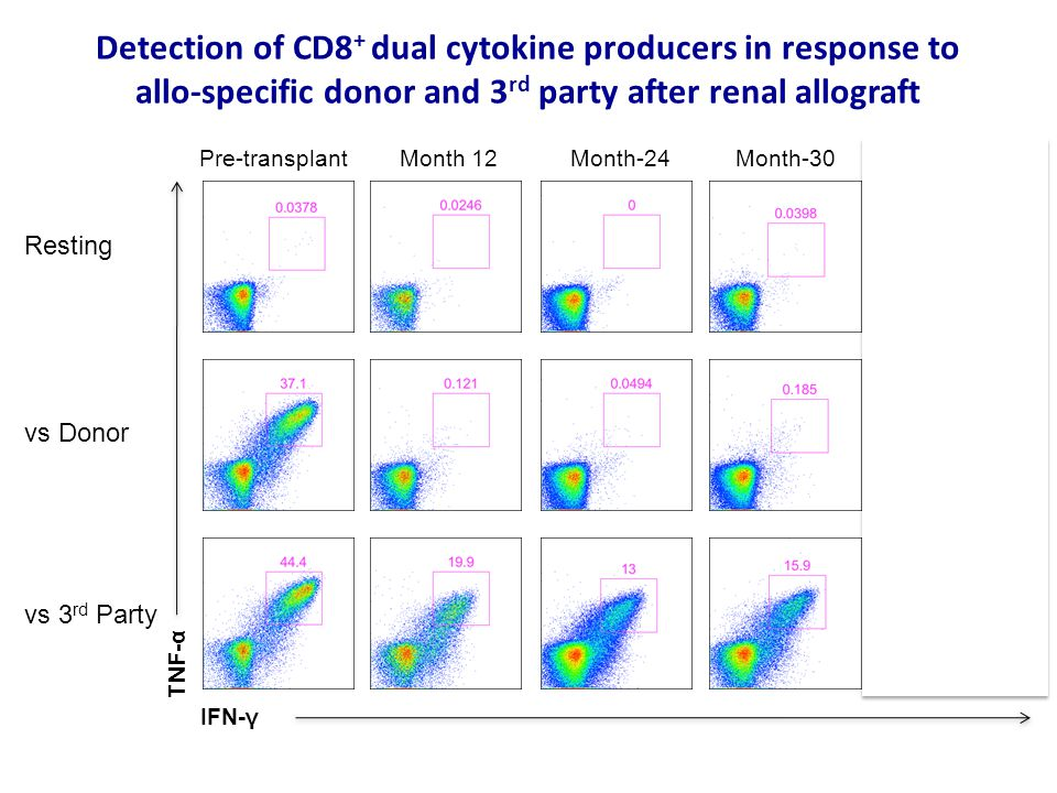 Detection of CD8+ dual cytokine producers in response to allo-specific donor and 3rd party after renal allograft
