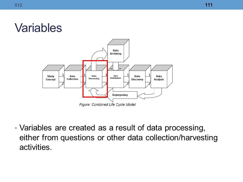 S12 Variables. Variables are created as a result of data processing, either from questions or other data collection/harvesting activities.