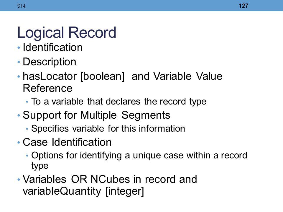 Logical Record Identification Description