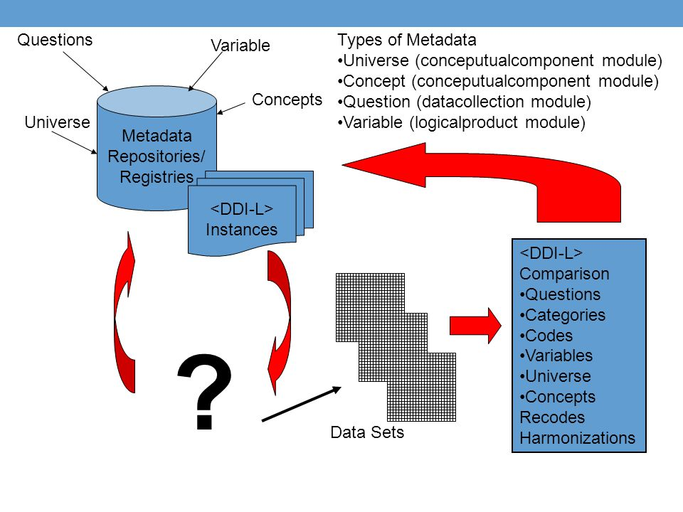 Questions Types of Metadata Universe (conceputualcomponent module)