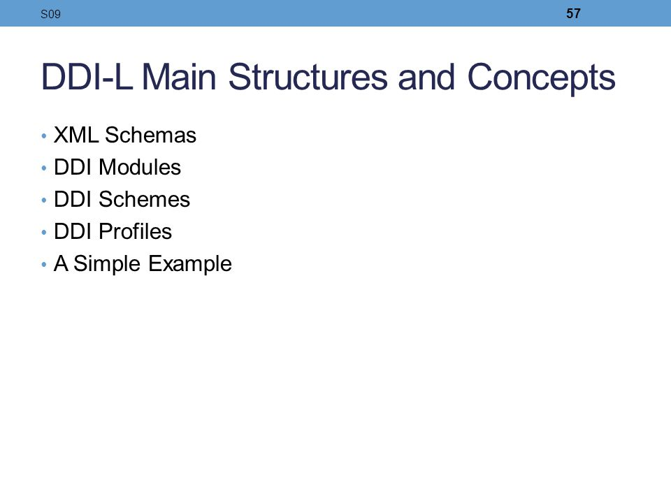 DDI-L Main Structures and Concepts