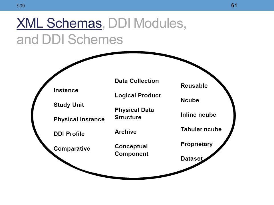 XML Schemas, DDI Modules, and DDI Schemes