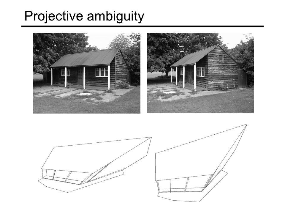 Projective ambiguity