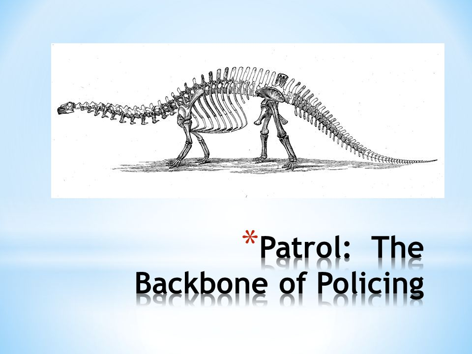 Patrol: The Backbone of Policing
