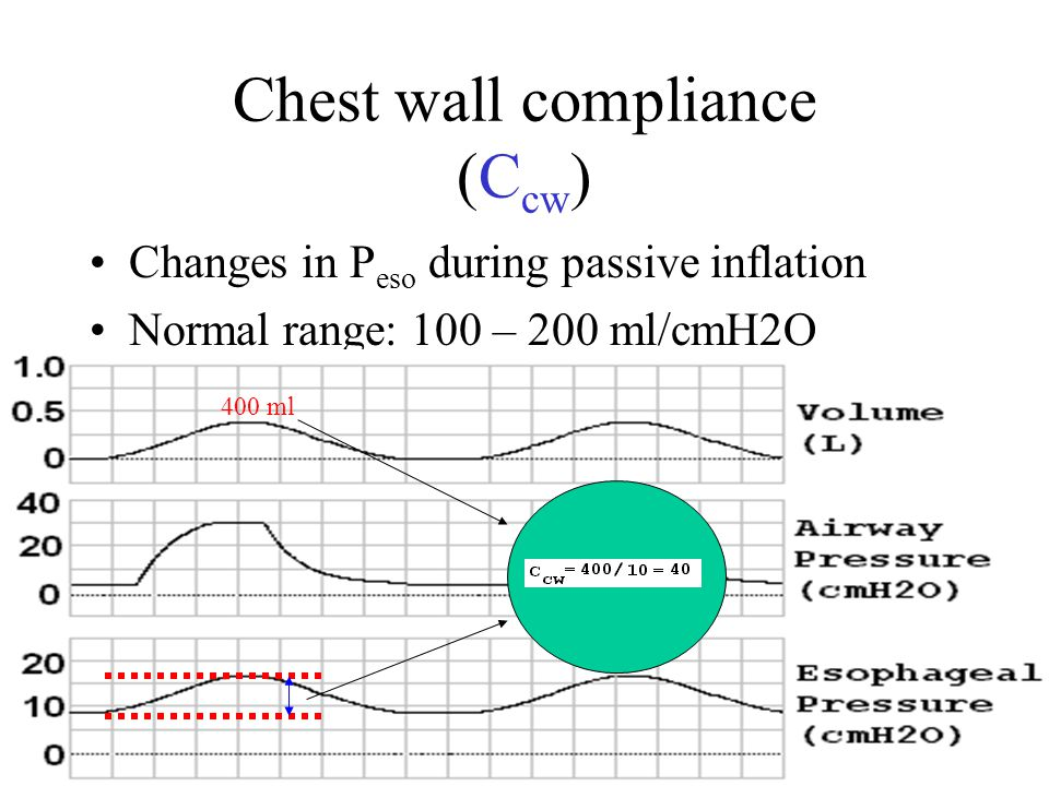 Chest wall compliance (Ccw)