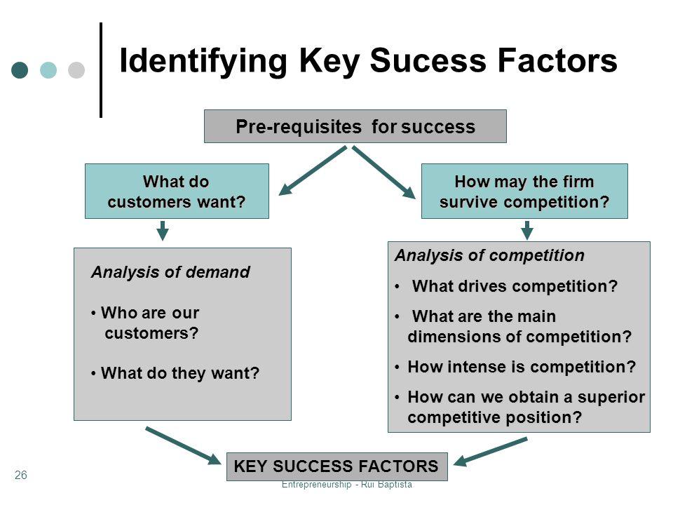Identifying Key Sucess Factors