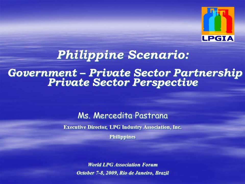 Government – Private Sector Partnership Private Sector Perspective