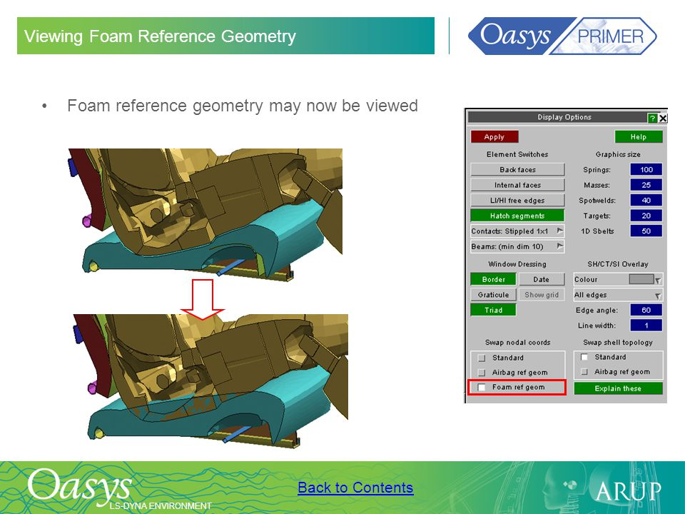 Viewing Foam Reference Geometry