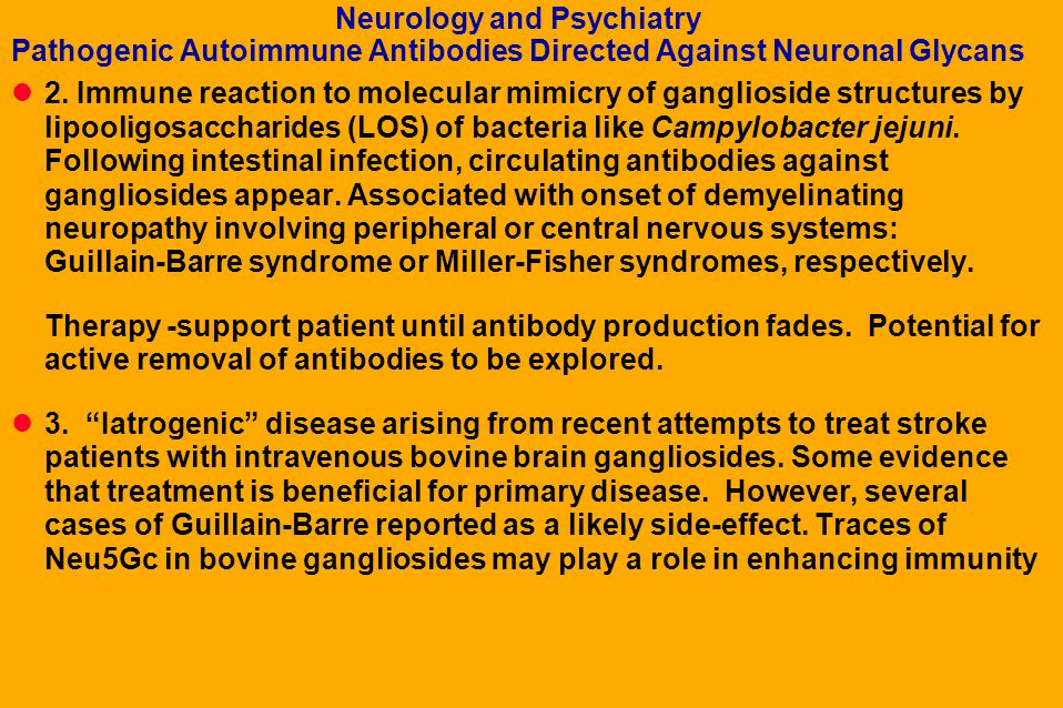 Neurology and Psychiatry Pathogenic Autoimmune Antibodies Directed Against Neuronal Glycans