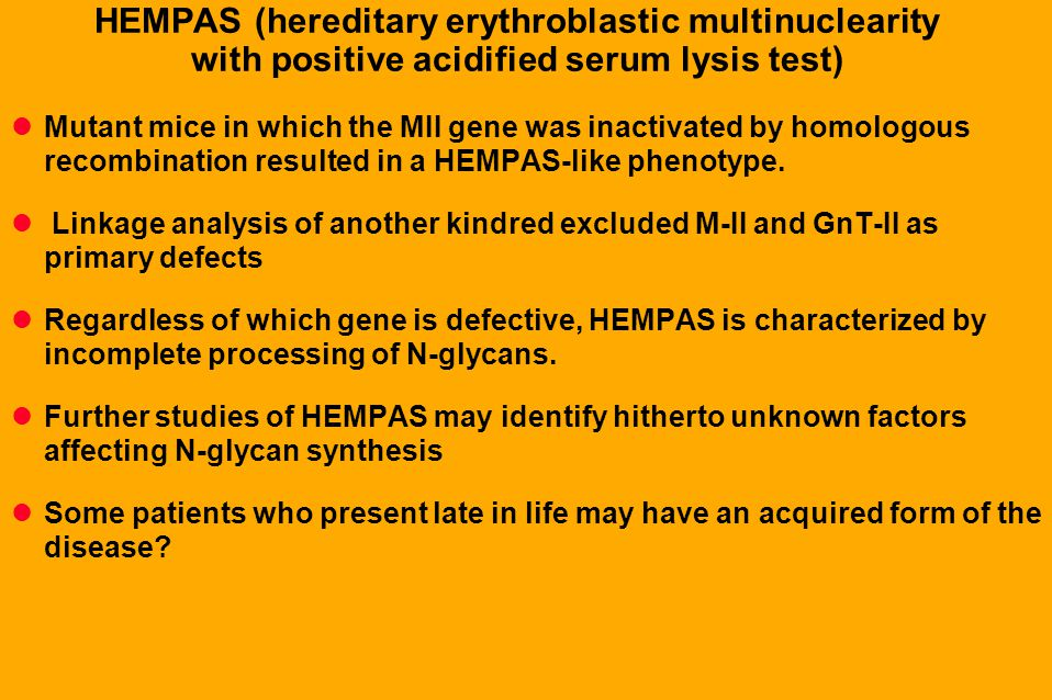 HEMPAS (hereditary erythroblastic multinuclearity with positive acidified serum lysis test)