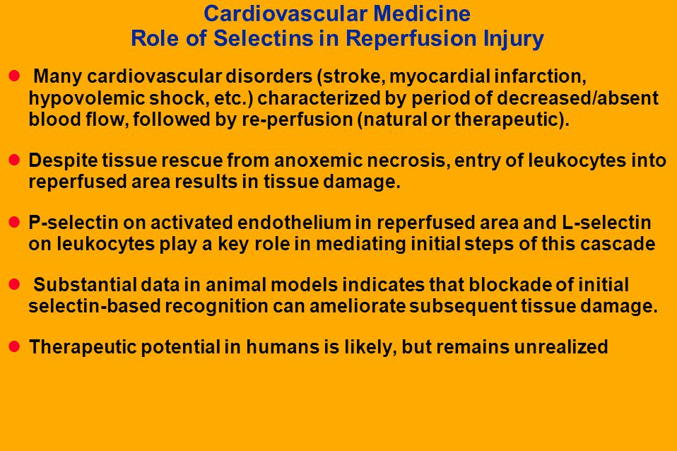 Cardiovascular Medicine Role of Selectins in Reperfusion Injury
