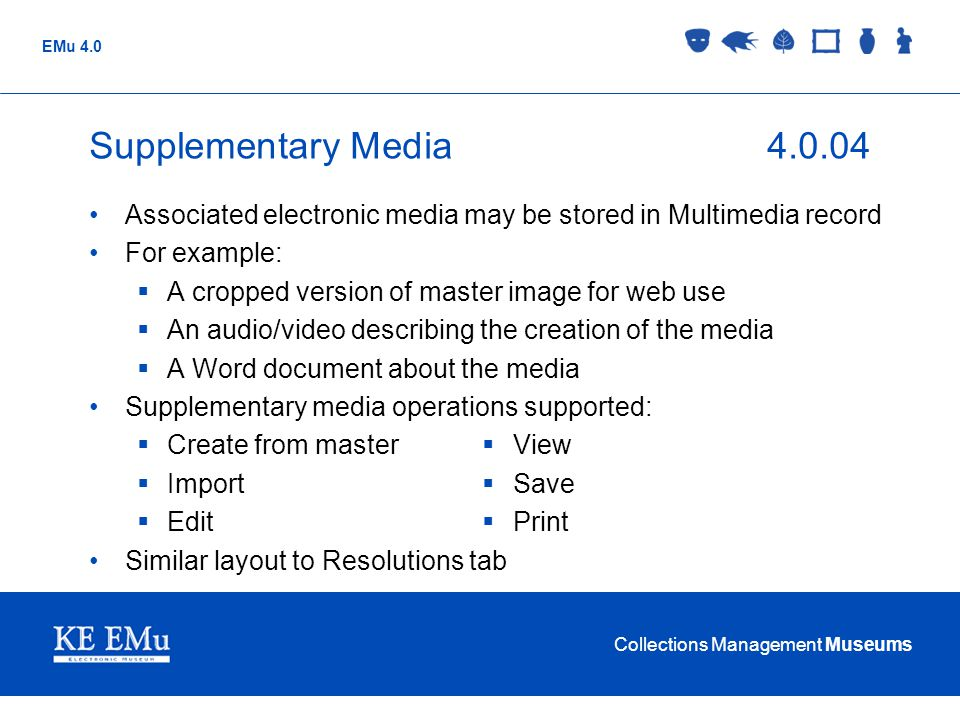 Supplementary Media 4.0.04 Associated electronic media may be stored in Multimedia record. For example: