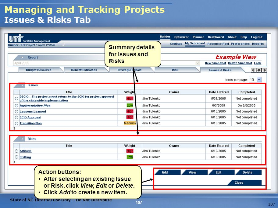Managing and Tracking Projects Issues & Risks Tab