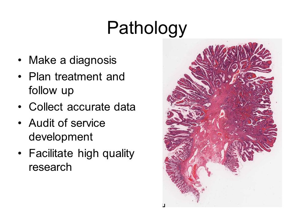 Pathology Make a diagnosis Plan treatment and follow up