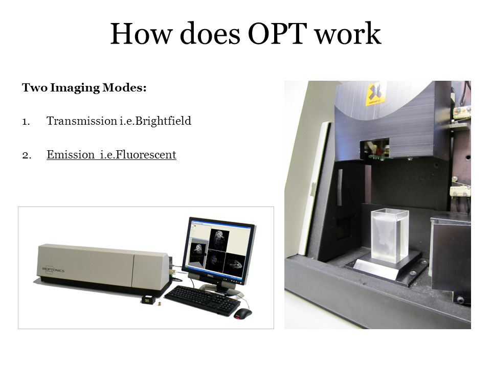 How does OPT work Two Imaging Modes: Transmission i.e.Brightfield