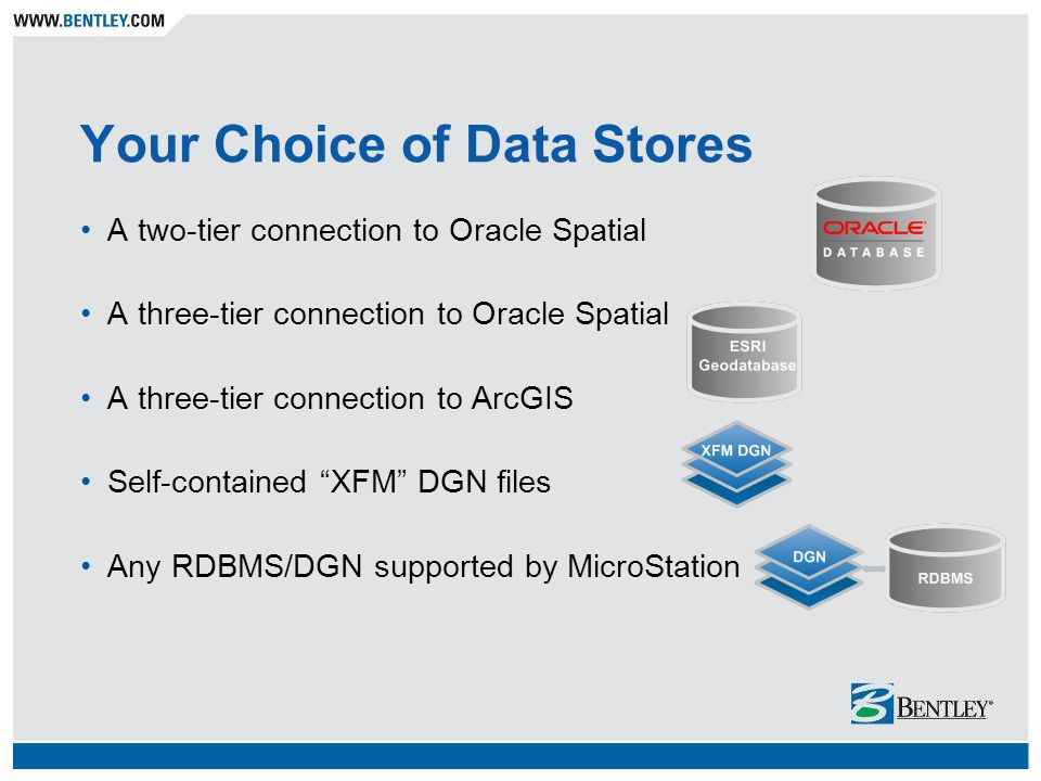 Your Choice of Data Stores
