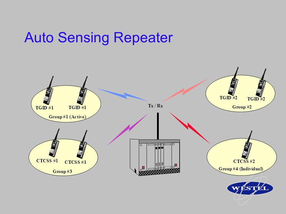Auto Sensing Repeater D # 1 T G I 2 C S G r o u p # 1 ( A c t i v e )