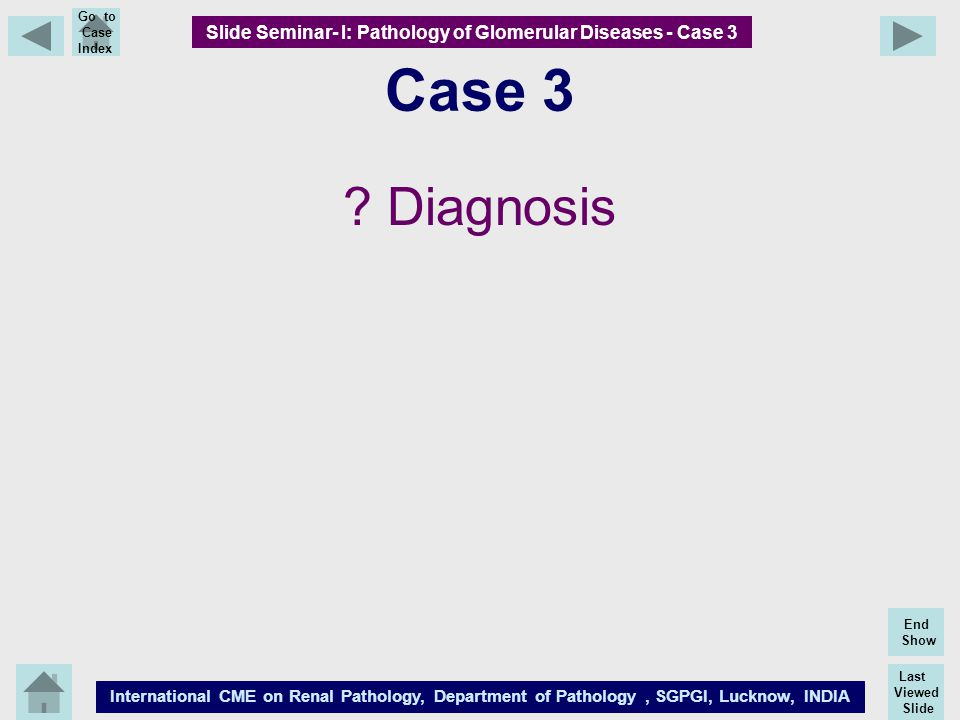 Slide Seminar- I: Pathology of Glomerular Diseases - Case 3