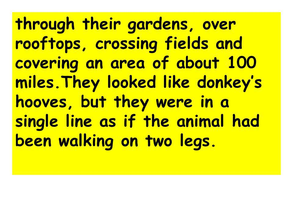 through their gardens, over rooftops, crossing fields and covering an area of about 100 miles.They looked like donkey's hooves, but they were in a single line as if the animal had been walking on two legs.